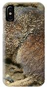 Down Right Dirty Mole IPhone Case