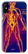 Drawing Of Human Venous System (leonardo Da Vinci) IPhone Case