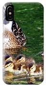 Duck And Ducklings IPhone Case