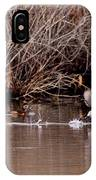 Duck - Ring-necked - Runway IPhone Case