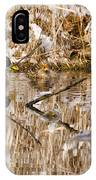 Ducks Reflect On The Days Events IPhone Case