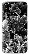 Dusty Miller Bw IPhone Case