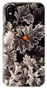 Dusty Miller  IPhone Case