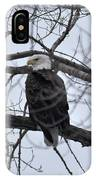Eagle In The Wild IPhone Case