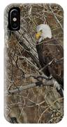 Eagle In Tree 3 IPhone Case