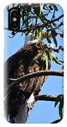 Eagle Under Cover IPhone Case