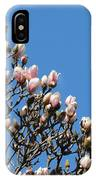 Early Flowering Magnolia IPhone Case