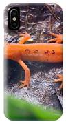 Easterm Newt Nnotophthalmus Viridescens 10 IPhone Case