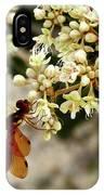 Eastern Amberwing On Wild Buckwheat IPhone Case