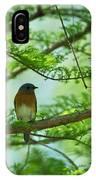 Eastern Bluebird In Bald Cypress Tree IPhone Case
