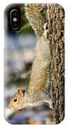 Eastern Gray Squirrel Sciurus IPhone Case