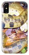 Eastern Hognose Snake IPhone Case