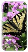 Canadian Tiger Swallowtail On Phlox IPhone Case