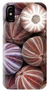 Edible Sea Urchin Souvenirs IPhone Case