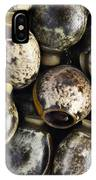 Eggs Of Stick Insect IPhone Case