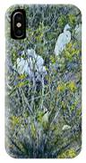 Egrets At Roost IPhone Case