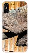 Elephant Feeding Time At The Zoo IPhone Case