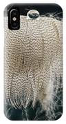 End Of The Feather IPhone Case