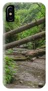 Entrance To Fern Canyon IPhone Case