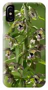 Epipactis Helleborine IPhone Case