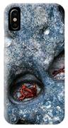 Eroded Rock With Dried Leaves IPhone Case