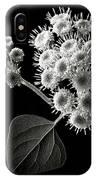 Eupatorium In Black And White IPhone Case