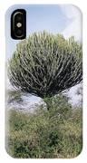 Euphorbia Candelabrum IPhone Case