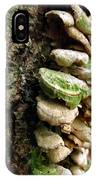Fairy Steps IPhone Case