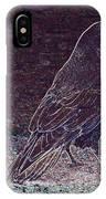 Faithful Raven IPhone Case