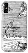 Falconry, 14th Century IPhone Case
