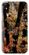 Fall Beckons  IPhone Case