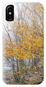 Fall Color And Fog IPhone Case