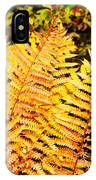 Fall Color Cinnamon Fern IPhone Case