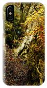 Fall Color Wall Art Landscape IPhone Case