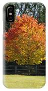 Fall Colored Tree IPhone Case
