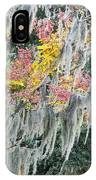 Fall Colors In Spanish Moss IPhone Case