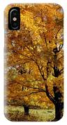 Fall Colours In Eastern Townships IPhone Case