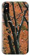 Fall Foliage Of Maple Trees After An IPhone Case