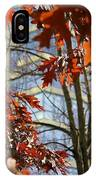 Fall In The City 1 IPhone Case
