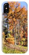 Fall In The Foothills IPhone Case