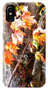Fall Leaves 2 IPhone Case