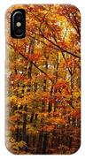 Fall Leaves On Trees IPhone Case
