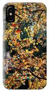 Fall Leaves Over Florida Pond IPhone Case