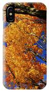 Fall Maple Treetops IPhone Case