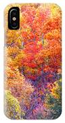 Fall Trees 3 IPhone Case