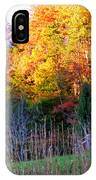 Fall Trees And Fence IPhone Case