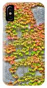 Fall Wall IPhone Case