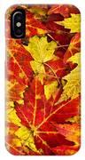 Fallen Autumn Maple Leaves  IPhone Case