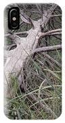 Fallen Pine Tree IPhone Case