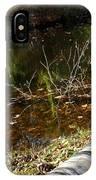 Fallen Tree Path IPhone Case